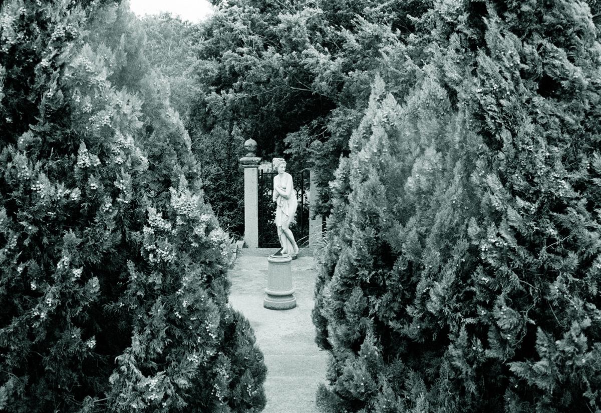 http://linseygosper.com/files/gimgs/1_linsey-gosperhaunted-garden1200px.jpg