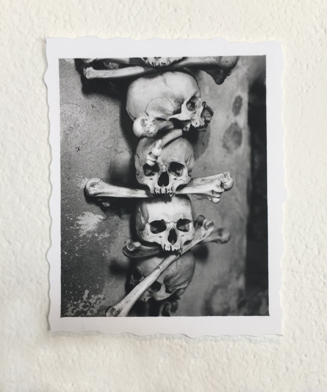 http://linseygosper.com/files/gimgs/38_skull-edit800px.jpg