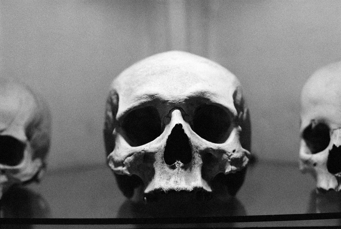 http://linseygosper.com/files/gimgs/th-47_47_skull800px.jpg